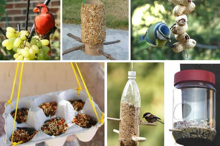 menjadores per als ocells fàcils de fer