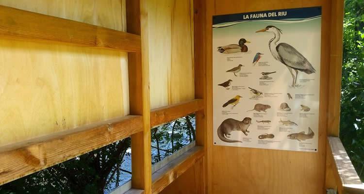 La Casa del Riu de Martinet11