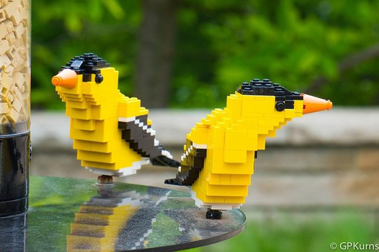 totnens-lego-ocells2