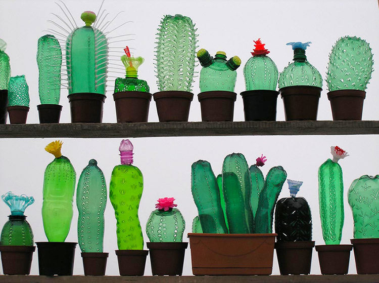 totnens-recilem-ampolles-plastic-plantes-veronika-richterova7