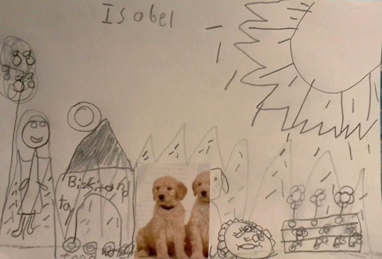 totnens-creatius-animals-dibuixats2