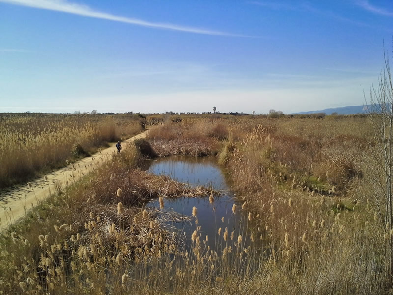 El camí de la Bunyola al Prat de Llobregat