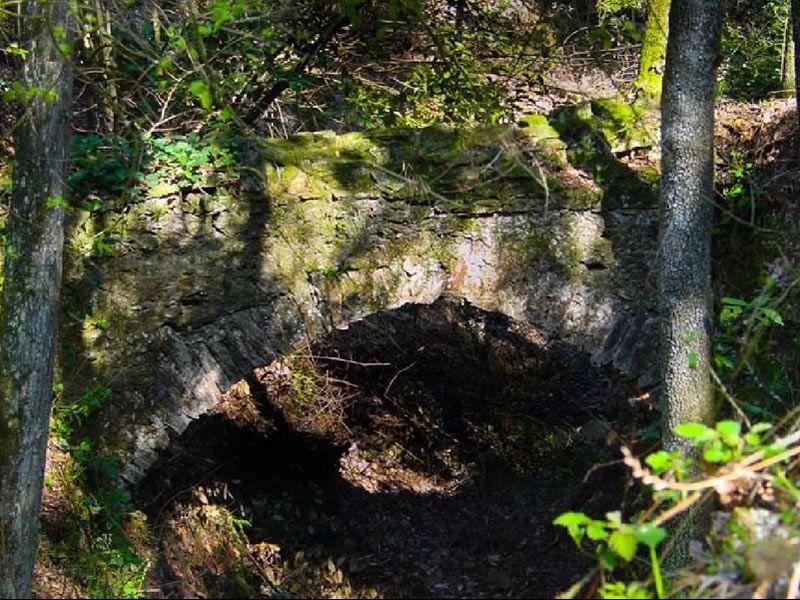 Sant Joan de Salern i el Bosc Tancat a Juià