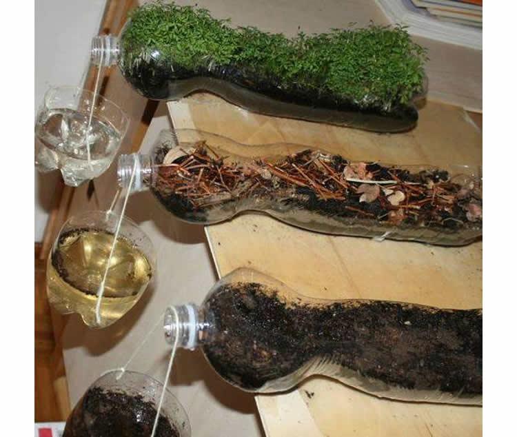 totnens-aprenem-erosio-plantes1