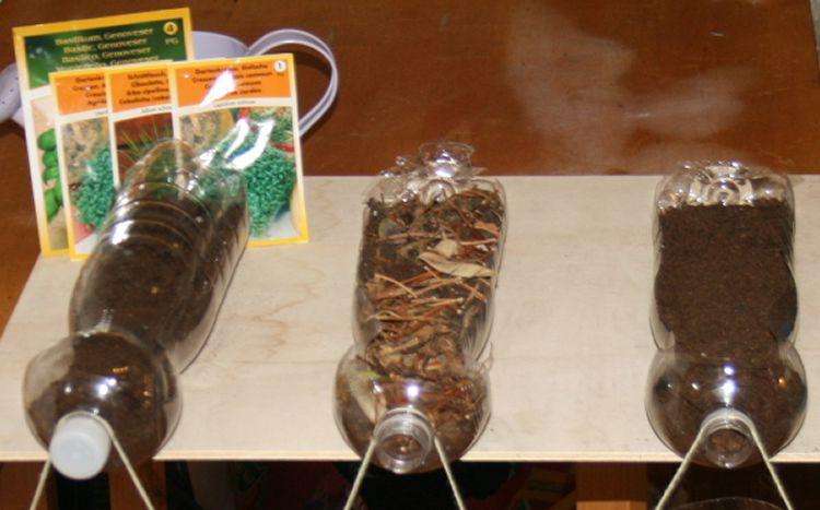 totnens-aprenem-erosio-plantes2