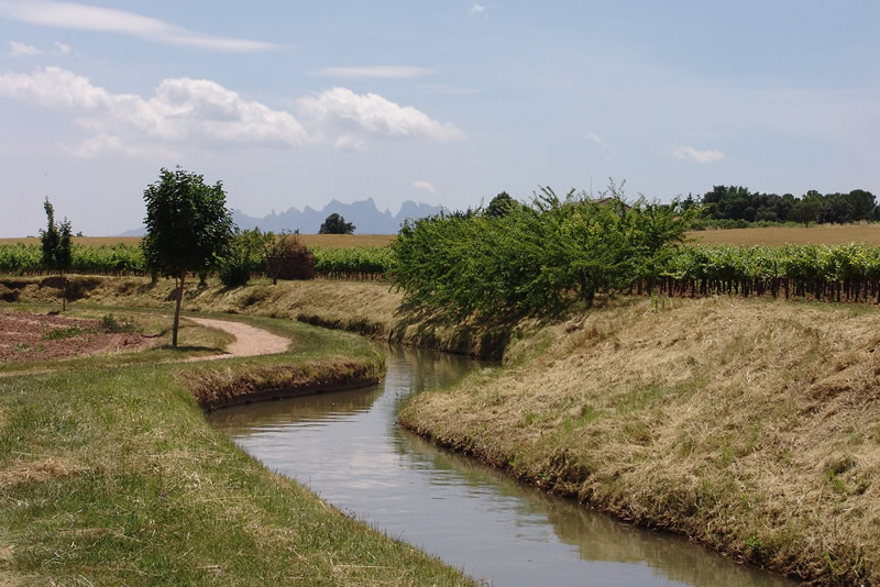 parcs de la sequia de manresa vistes Montserrat