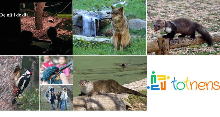 totnens-animals-salvatges000