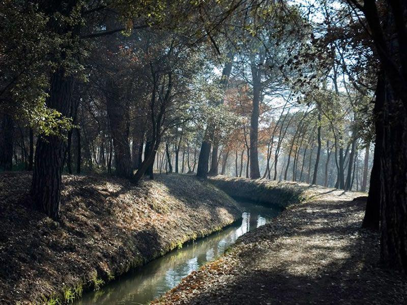 Parc de la Séquia a Manresa
