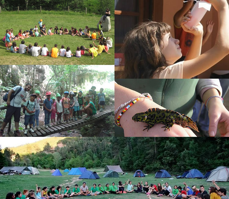 totnens-colonies-campaments-2016B