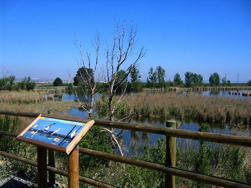 Camí Natural d'Utxesa a Torres de Segre