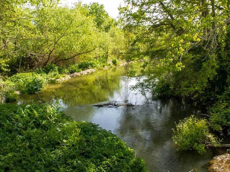 La Resclosa d'Ullà Parc de Torroella de Montgrí