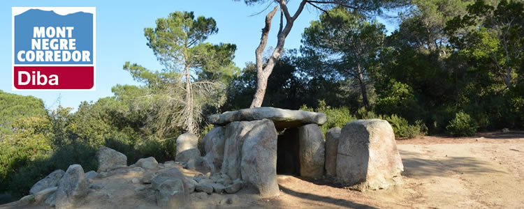 parc-natural-montnegre-corredor-totnens