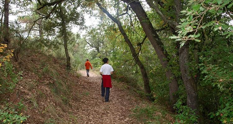 Puig de la Balma: excursió amb nens a la Mura