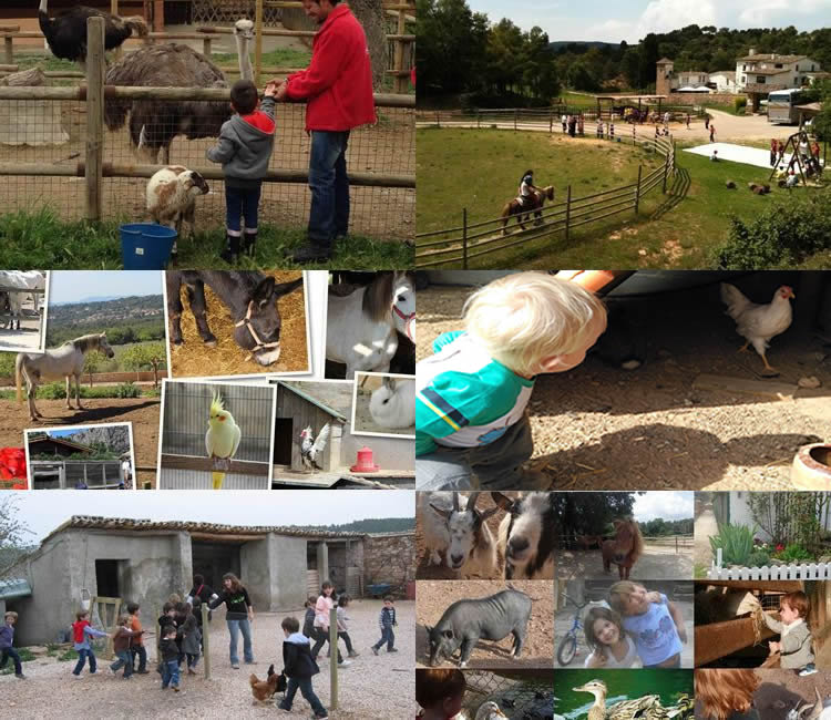 Restaurant granja: dinar i activitats amb nens