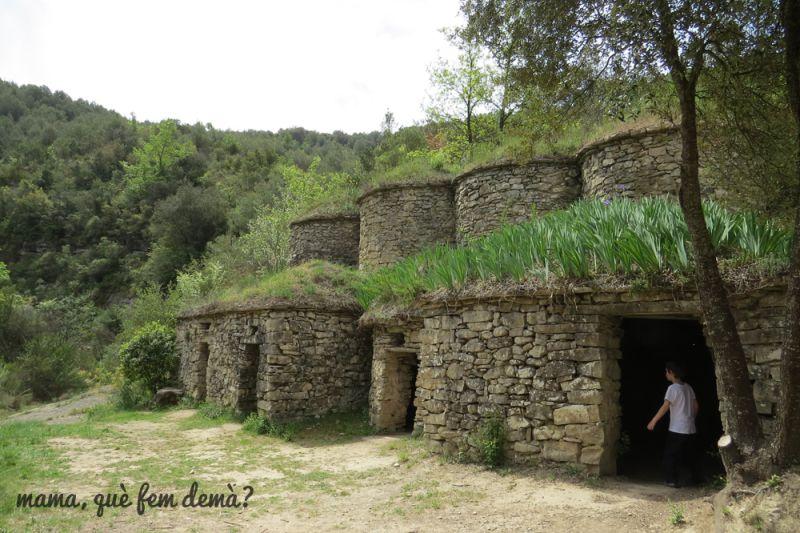 Les Tines de la Vall de Flequer a Pont de Vilomara