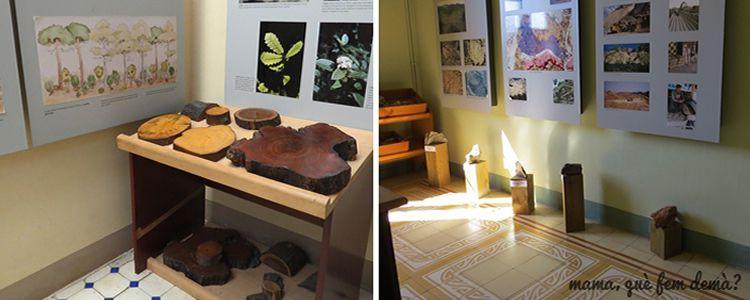 Centre d'Educació Ambiental de Can Coll a Collserola