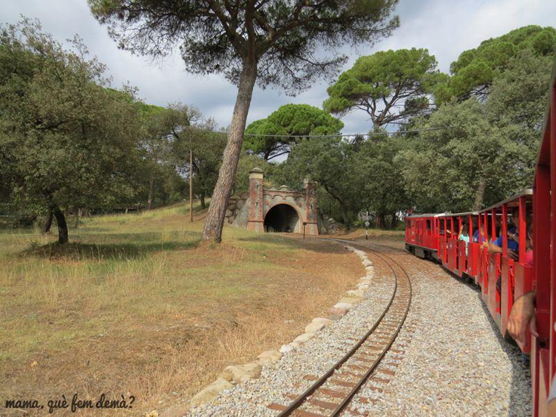 tren-de-palau-al-parc-de-lhostal-del-fum