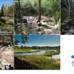 Vallès Oriental amb nens, 5 itineraris familiars fàcils