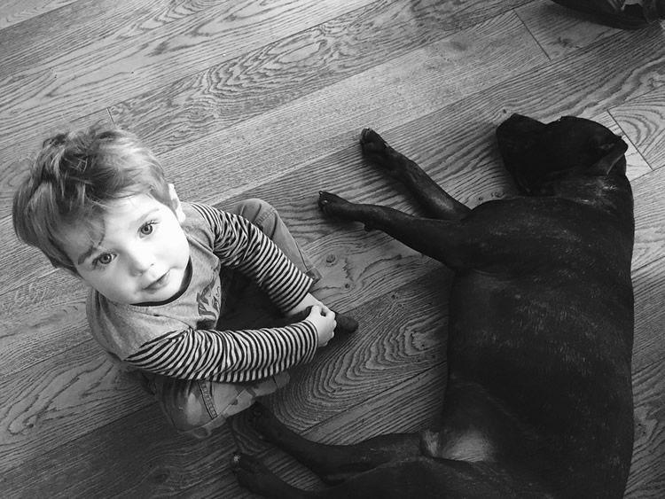 5 raons per no regalar un gos als nens