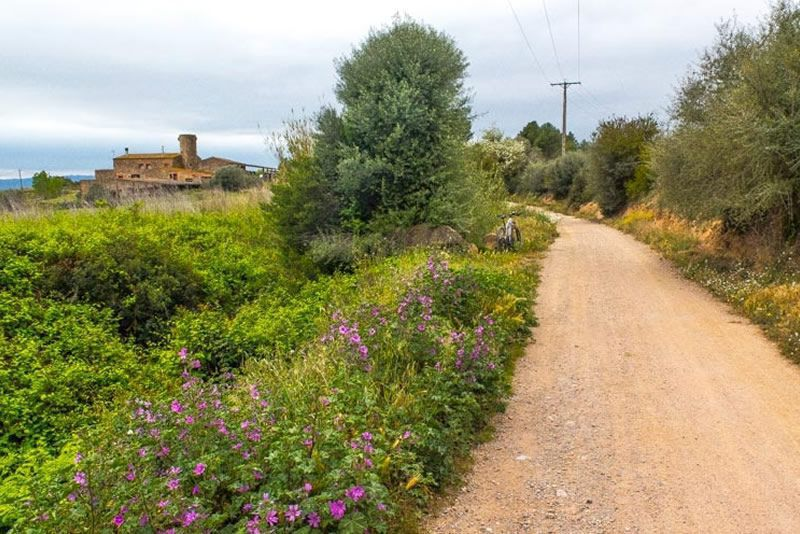De l'Estartit a Torroella de Montgrí pel camí vell