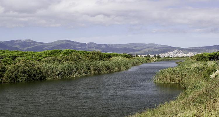 El Remolar – Filipines al Delta del Llobregat