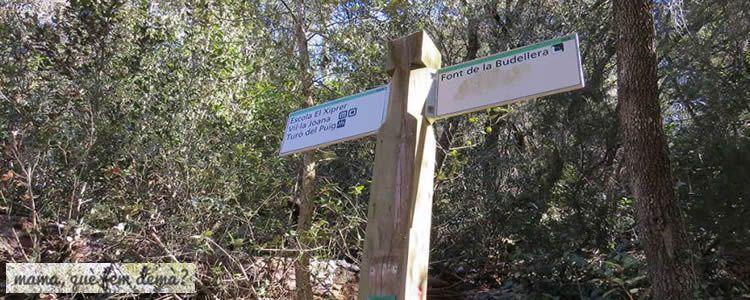 Font de la Budellera des del Funicular de Vallvidrera