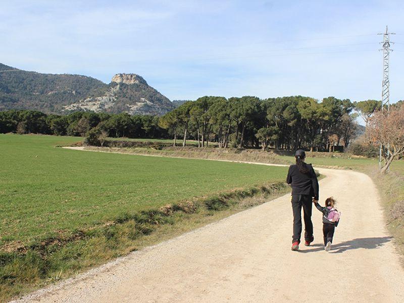 Roc Gros dels Hostalets de Balenyà