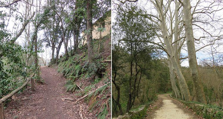 La Vall d'Olzinelles a Sant Celoni