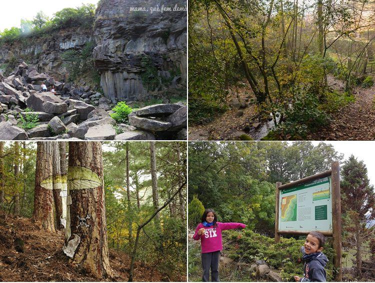Sortides a la natura amb nens per descobrir-la