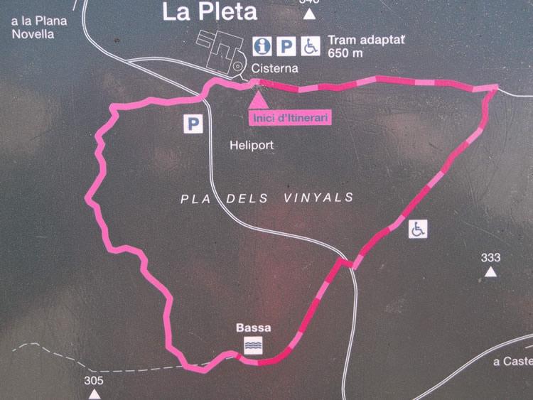 Itinerari botànic de la Pleta al Parc del Garraf
