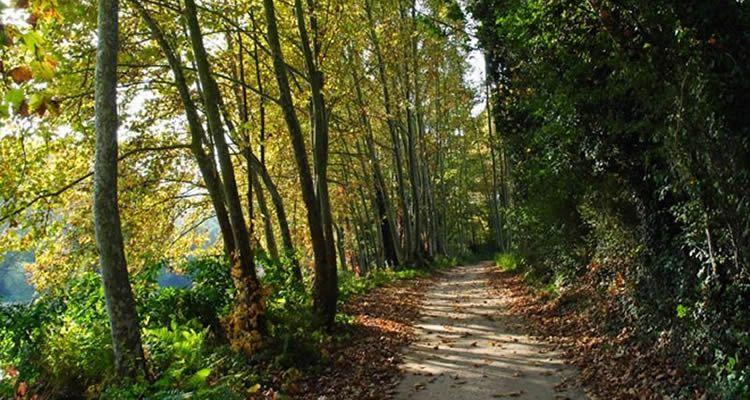 La Selva amb nens, 5 excursions per descobrir la comarca