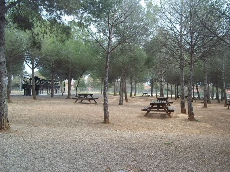 Parc Forestal de Can Cases de Martorell