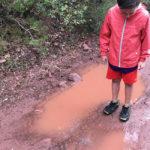 Com gaudir de l'aigua tot l'any: pluja, neu, rius, mar...