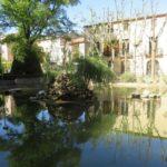 Parc Municipal Francesc Viñas a Moià