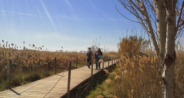 Delta del Llobregat, espai natural protegit01