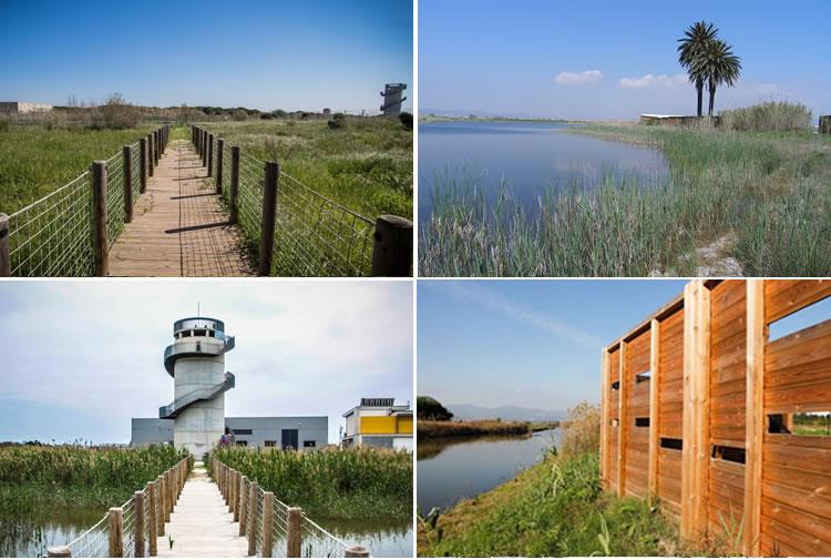 El Delta del Llobregat, espai natural protegit13