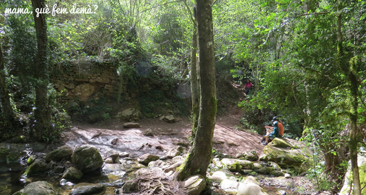 Rutes circulars al Montseny amb nens