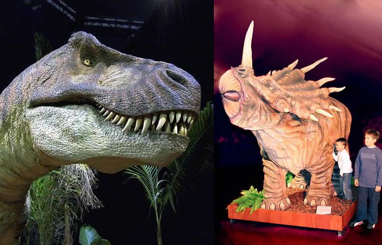 Dino Expo XXL 80 dinosaures a escala real