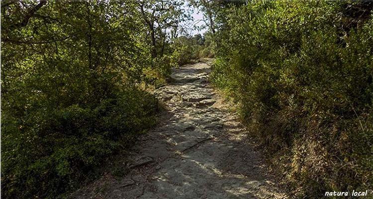 El pont d'en Gatus sobre el riu Gurri