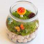 Com fer un mini jardí en un pot de vidre