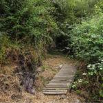 Ruta de les font a Castell-Platja d'Aro