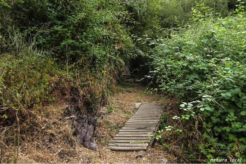 Ruta de les fonts a Castell-Platja d'Aro
