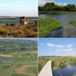 zones humides Catalunya