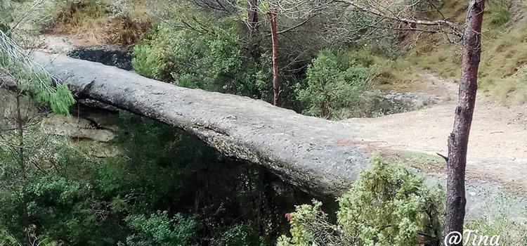 Pont de les Arnaules o Pont Foradat