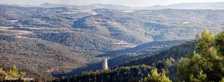 Torre de Vallferosa a Tora