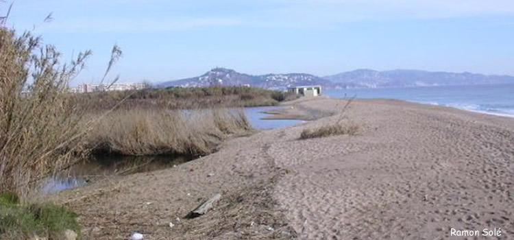 Delta del riu Tordera entre Malgrat de Mar i Blanes
