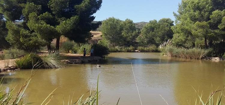 Excursions a petits estanys i pantans