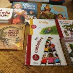 Literatura infantil de Festa Major