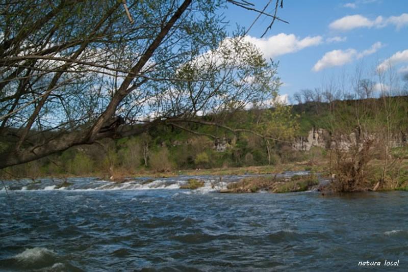 Meandres del Ter a Les Masies de Voltregà