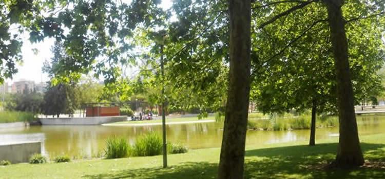 5 parcs infantils amb taules de pícnic